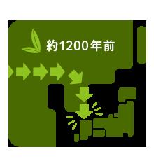 中国から日本へ、お茶の伝来